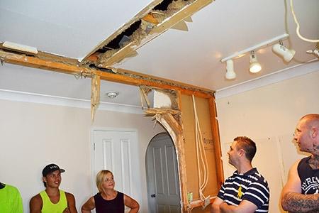 Gallery | Pest & Termite Control | Pioneer Pest Control