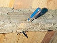 Timber destoryed