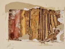 Hidden termites